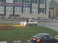Автомобиль выехал на газон на круговом п-ке на ул. Угрешская